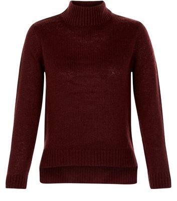 Teens Burgundy Turtle Neck Jumper