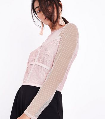 Shell Pink Mesh and Lace Long Sleeve Crop Top