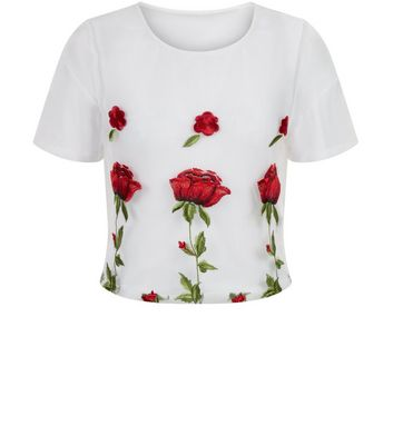 Parisian White Rose Embroidered Mesh Crop Top New Look