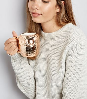 Rose Gold Metallic Owl Mug New Look