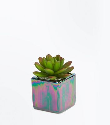 Multi Colour Oil Slick Cube Faux Plant New Look