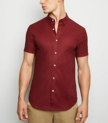 Burgundy Short Sleeve Muscle Fit Oxford Shirt