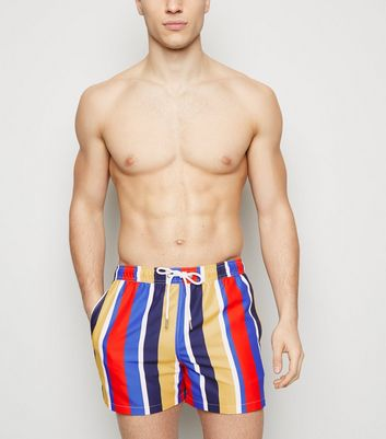 Blue Vertical Stripe Swim Shorts