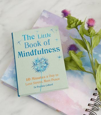 Light Green Mindfulness Book